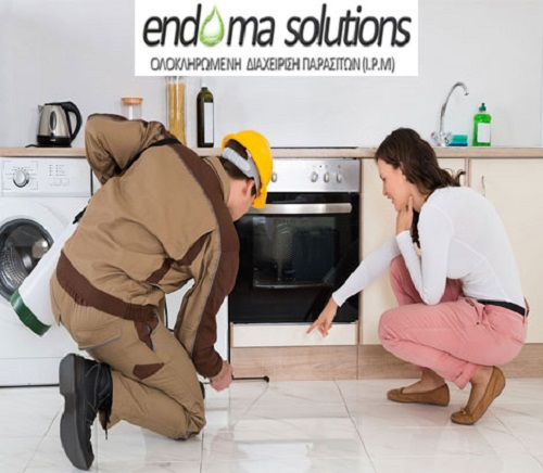 endoma solutions2